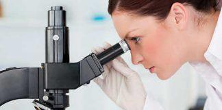 как правильно собрать анализ кала на скрытую кровь