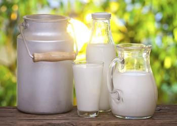 можно ли кормящей маме цикорий с молоком