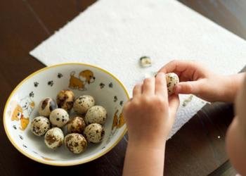 перепелиные яйца польза для детей