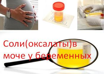 Оксалаты при беременности