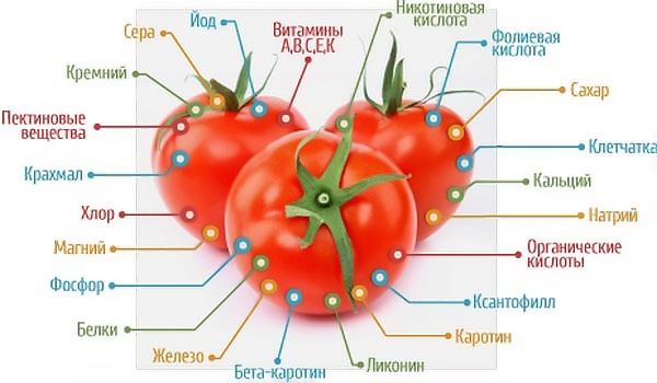 польза помидоров при грудном вскармливании